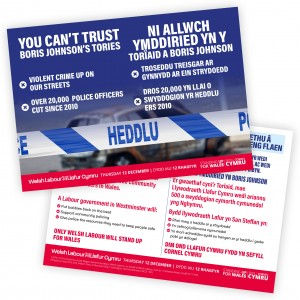 Welsh Version: The Tories have failed to protect frontline policing leaflet