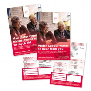 Welsh Labour Summer Survey Leaflet