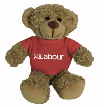 Image of teddy bear with labour t-shirt